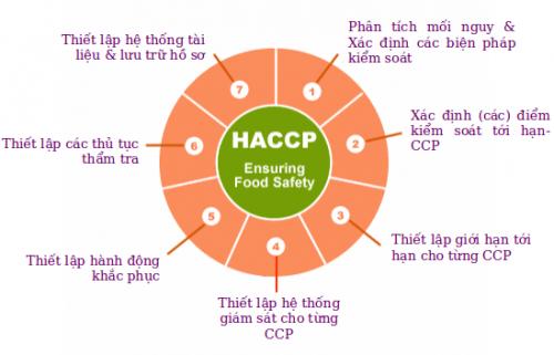 Nguyên tắc HACCP trong tiêu chuẩn ISO 22000