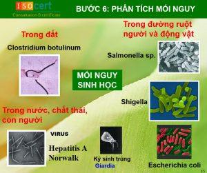 Các bước xây dựng HACCP