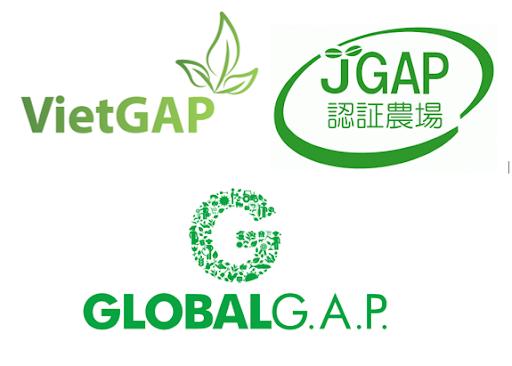 Các tiêu chuẩn GAP trên thế giới
